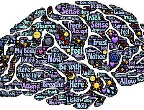 The vagus nerve, brain, emotions and why mindfulness can be difficult but yoga a solution